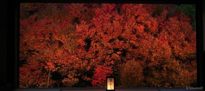 ドウダンツツジで燃える寺「但馬安国寺」と但馬の小京都「城下町 出石」散策