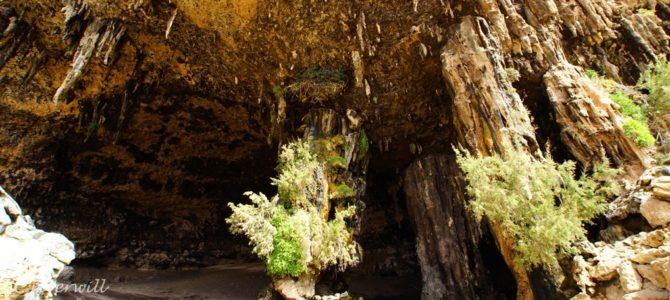 インド洋のガラパゴス!秘境ソコトラ島の旅~第4日目 ダグブ洞穴&ザヒーク砂丘 前編 Socotora, Yemen