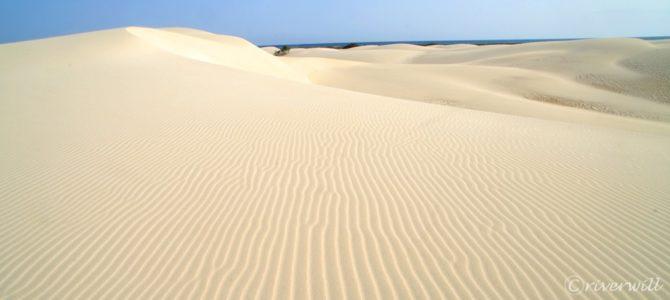 インド洋のガラパゴス!秘境ソコトラ島の旅~第4日目 ダグブ洞穴&ザヒーク砂丘 後編 Socotora, Yemen
