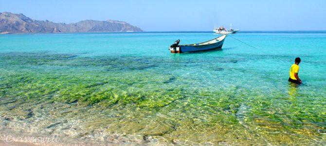 インド洋のガラパゴス!秘境ソコトラ島の旅~第6日目 シュアブ・ビーチとディハムリ海洋保護区 前編 Socotora, Yemen