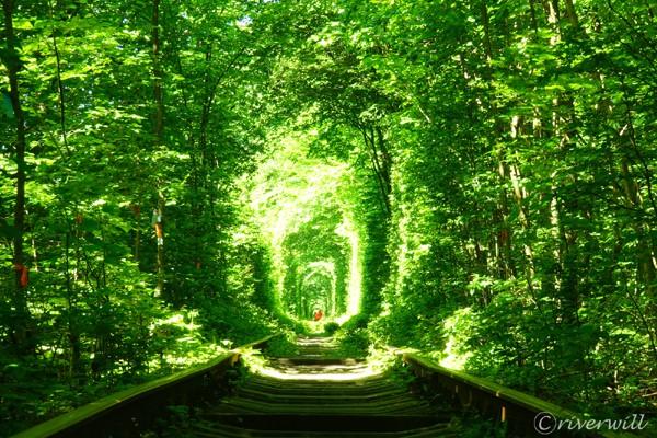 ウクライナ リウネ 愛のトンネル Tunnel of Love, Rivne, Ukraine