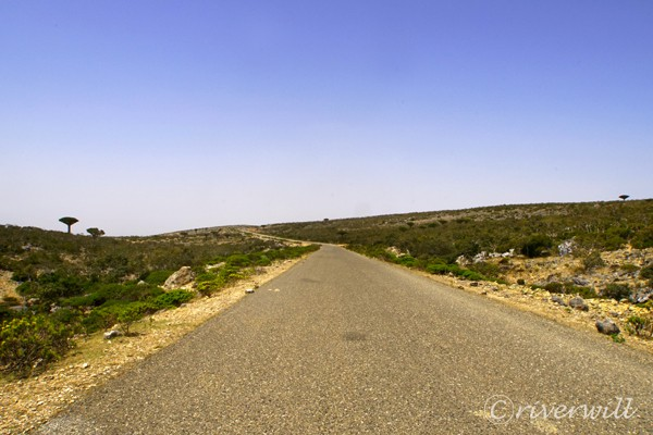 ワディ・ディルフル渓谷 Wadi Dirhur Canyon, ソコトラ島(イエメン) Socotra Island , Yemen